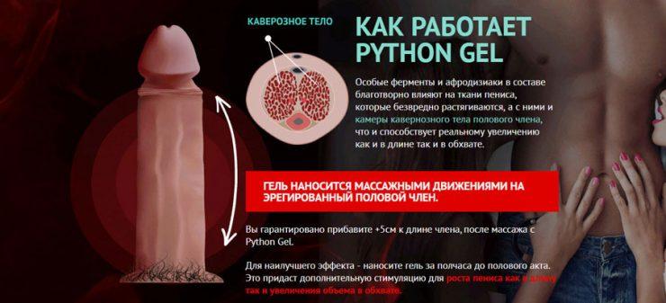 Python Gel как работает