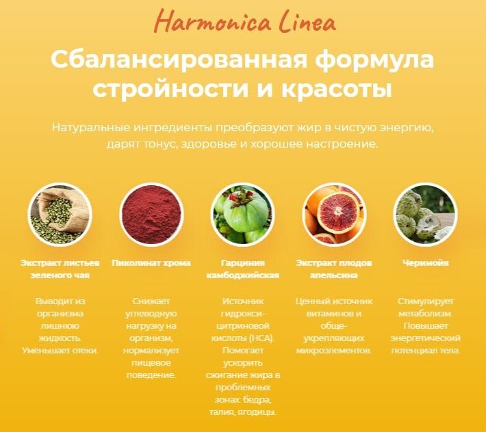 Harmonica Linea состав