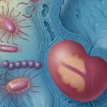Самые эффективные препараты и народные рецепты для лечения простатита в домашних условиях